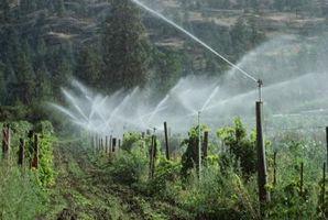 Cómo aumentar la presión del agua para aspersores de yarda