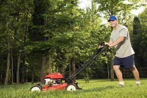 Cómo cubrir las malas hierbas con una lona
