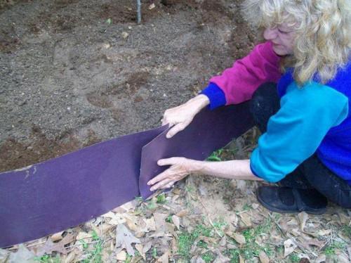 Cómo hacer una cama elevada de vegetales