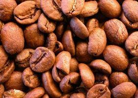 Cómo cultivar café hawaiano