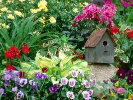 Cómo instalar tu propio diseño de jardines