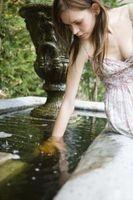 ¿Cómo deshacerse del césped en una fuente de agua
