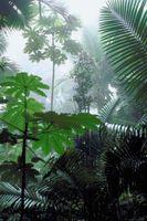 Alternativa aire acondicionado para climas húmedos