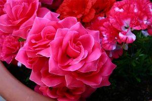 Instrucciones para hacer arreglos florales de seda