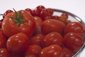 Cómo construir un enrejado de tomate