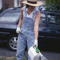 ¿Puede mezclar el fertilizante orgánico y fertilizante Regular?