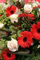 Lo mejor para almacenar flores frescas, para Bouquets