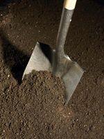 Períodos de espera para esterilización del suelo