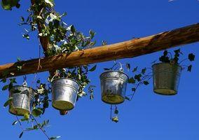 Cómo reciclar de jardines de contenedor