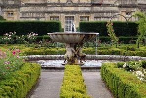 Cómo diseñar un jardín de estilo Mediterráneo