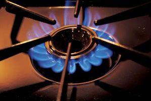 ¿Cuál es el rango de vida útil de una estufa de Gas de cocina?