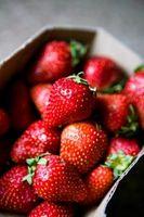 ¿Qué hacer después de la primera cosecha de fresa