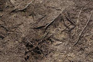 El propósito de la densidad aparente del suelo