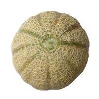 Cuando a la cosecha de melón