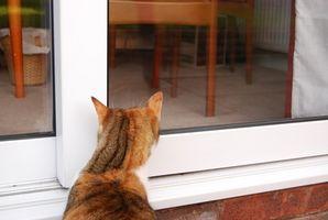 Cómo hacer una puerta para mascotas aislada