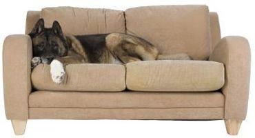 ¿Qué grado de tela sería buena Tapice un sofá de la sala?