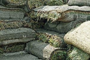¿Cómo se vende Grass sintetico?