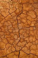 ¿Qué tipo de suelo tiene Arizona?