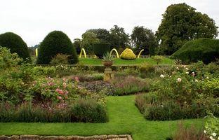 ¿Dirección que para plantar un jardín?