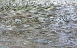 Madera sostenible verde que parece Similar a la madera de teca