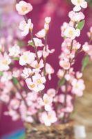 Cómo arreglar flores en un florero alto con una abertura estrecha
