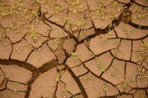 Suelos y análisis de suelos