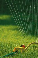 Etapa cuatro restricciones de agua
